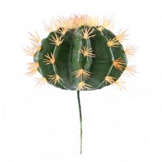 Kaktus zum Stecken groß, rund