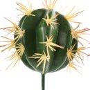 Kaktus zum Stecken rund 5-er Set