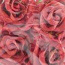 Schaumstoff-Rosenköpfe rot 12 Stück