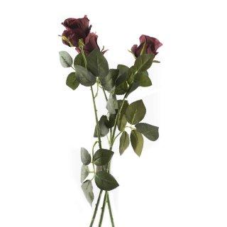 Rosen im 3er Set bordeaux