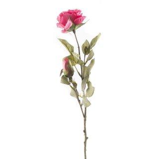 Rose mit 2 Blüten pink