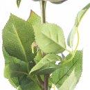 Kunst-Blume Rose mit großen Blütenkopf pink