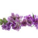 Kunst-Blume Delphinium/Rittersporn pink