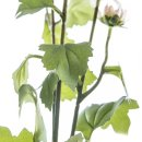 Kunst-Blume Chrysantheme zartrosa