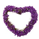 Blumenherz lila