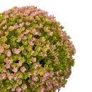 Blumenball rosa