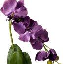 Deko Orchidee im Topf violett
