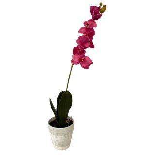 Deko Orchidee im Topf Pink